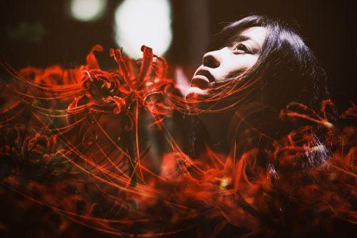 【霊のはなし】スピリット・魂・ゴースト・亡霊・霊。言葉の違いと概念を整理するとこうなった。
